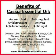 Benefits of Cassia Essential Oil | www.mydoterra.com/improve