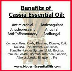 Benefits of Cassia Essential Oil | www.mydoterra.com/improve