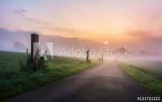Explore Background premium, high quality stock images, templates and assets for your creative projects on Adobe Stock. 3d Assets, Adobe, Country Roads, Templates, Explore, Sunset, Image, Stencils, Cob Loaf