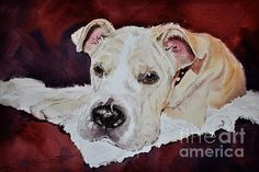 I can create a customer watercolor portrait of your favorite pet.