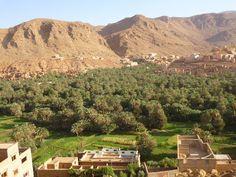 ANTROPOLOGÍA Y ECOLOGÍA UPEL: Pueblos de Marruecos - Palmeral del Rio Ziz