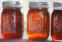 Maple Syrup Time: A Visit to the Sugar Shack