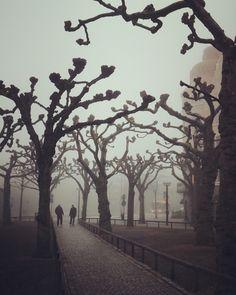 En vägg av dimma