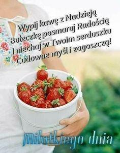Fruit, Good Morning Funny, Night