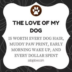 The love of my dog. Is worth every dog hair, muddy paw print, early morning wake up, and every dollar spent. I Love Dogs, Puppy Love, Cute Dogs, Golden Retriever, Labrador Retriever, Animal Crossing, Jiff Pom, Dog Rules, Animal Quotes
