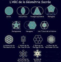 La Géométrie Sacrée est une source d'information appartenant à l'humanité que nous avons oubliée, résidant dans notre subconscient. Elle représente le langage universel de la création. Tout le cosm…
