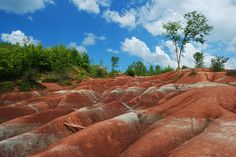 The Cheltenham Badlands are a bizarre geographical spectacle that lies hidden in the Caledon Hills. This area consists of bare, windswept red hills and gullies that are very similar to that of the Alberta badlands. What makes them so bizarre is that they are found in Ontario.