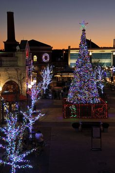 Christmas in Newport, Rhode Island   #VisitRhodeIsland