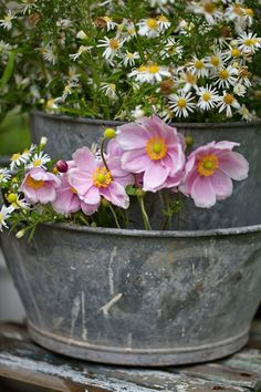 Vintage zinc and flowers love the bucket inside a tub