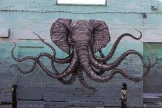 Alexis Diaz is an artist from Puerto Rico that creates impressive enough individuals murals in various parts of the world. The animals are creating a representation that is definitely strange and surreal, but still very amazing.