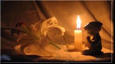 Free Online Image Editor Online Image Editor, Birthday Candles, Candle Holders, Prayers, Cinematography, Tea Lights, Free, Faces, Rabbits