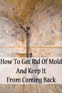 How to get rid of mold and keep it from coming back.