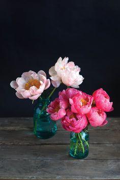 la-the-flower-recipe-book-20130501-002 (1365×2048)