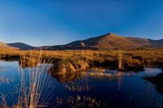 Ballycroy National Park in Co Mayo is one of six national parks in Ireland that is immersed in beautiful unspoilt nature, landscapes and scenery: http://www.bandbireland.com/Search/Mayo
