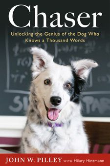 Chaser: Unlocking the Genius of the Dog Who Knows a Thousand Words, by Dr. John W Pilley Jr.D & Hilary Hinzmann. This amazing Border Collie is redefining animal intelligence. Dogs are smarter than you think. Animal Intelligence, Dog Minding, Border Collie Puppies, Border Collies, Border Collie Names, Dog Books, Read Books, Horse Books, Animal Books