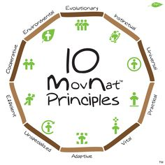 Principles of Movnat (natural movement) developed by Erwan LeCorre
