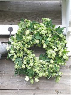 Hops wreath, beautiful rustic decoration for late summer/Autumn wedding. Wreaths For Front Door, Door Wreaths, Green Wreath, Floral Wreath, Decoration Inspiration, Deco Floral, Summer Wreath, How To Make Wreaths, Dried Flowers