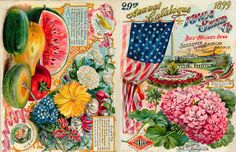 1899 Iowa Seed Co ~ SIL08-10851 by public.resource.org, via Flickr