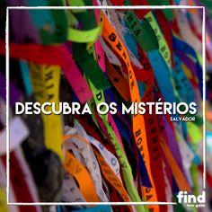 Salvador é uma jóia do Brasil.Conheça os melhores Guias de Turismo locais e Descubra os mistérios da Bahia.  Conheça as agências de turismo indicadas pela find Tour Guide.  #findtourguide #salvador #bahia #guiadeturismo