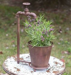 Water Spigot Tabletop Planter - Looking for a conversation piece for your patio? Our Water Spigot Tabletop Planter is guaranteed to grab the attention of your guests. Made from plumbing parts, it is the cutest planter you've seen. Includes a metal pot. Lawn And Garden, Garden Art, Garden Design, Garden Junk, Garden Tools, Vintage Garden Decor, Country Garden Decorations, Rustic Garden Decor, Vintage Outdoor Decor
