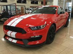 Cool Amazing 2017 Ford Mustang Shelby GT350 2017 Shelby GT350 Brand New!! 2018 Check more at http://24auto.cf/2017/amazing-2017-ford-mustang-shelby-gt350-2017-shelby-gt350-brand-new-2018/