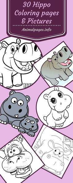 30 Hippopotamus Coloring Pages, Cliparts and Pictures: Cute Baby Hippos and Mommy Hippo Pictures. Easy to Color Hippo coloring sheets for kids birthday party activities.