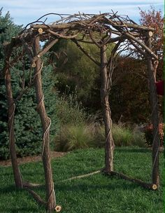Wedding Arch with grape vine hearts