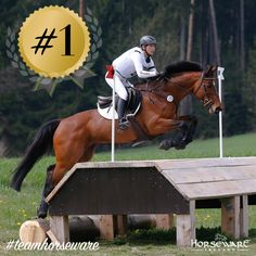 Our very own superstar Horseware Hale Bob, ridden by the equally amazing Ingrid Klimke, just stole the show by becoming the #1 FEI ranked Eventing Horse! #Horseware #teamhorseware #superstars #eventing #numberone #champions #germany