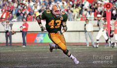 Craig Shaffer Photograph - Edmonton Eskimos Football - Craig Shaffer 2 - 1986 by Terry Elniski
