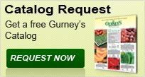 Gurney's -- recommended by Jo.  They have a plant replacement policy.