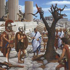 El olivo consagrado a la diosa Atenea se quemó cuando Jerjes tomó la ciudad e incendió el templo, pero -narra Herodoto-, cuando al día siguiente los atenienses subieron al templo a sacrificar, vieron que del tronco del olivo sagrado había nacido un retoño que tenía un codo de largo