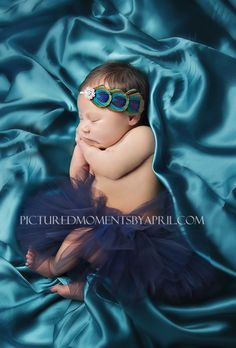 newborn baby girl in navy tutu with peacock feather headband