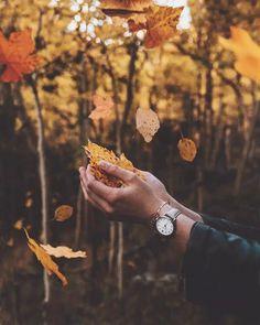 фото осень листья в руке без обработки: 8 тыс изображений найдено в Яндекс.Картинках