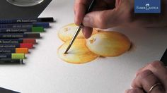 Watercolor pencils   Crayons aquarellables   Lápis de cor aguareláveis
