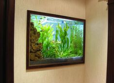Consider adding an aquarium to your interior design, because there are a few reasons why you really should have it in your home. A small tropical fish aquarium on a deck or a large glass fish tank on