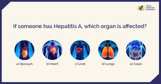 Hepatitis A can be prevented by vaccine and is treatable. But do you know which organ it affects? #medicalfacts #TexilaAmericanUniversity