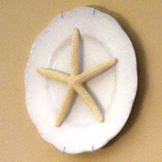 starfish wall plate