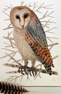 barn owl by Golly Bard
