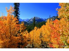 rocky mountain national park in the fall | Temperature fluctuations become noticeable, with summer-like heat one ...