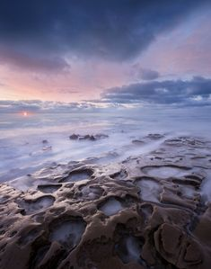 The tide pools of La Jolla in San Diego, California