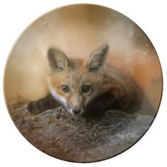 Fox On The Rocks Collectible Plate - kitchen gifts diy ideas decor special unique individual customized