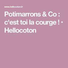Potimarrons & Co : c'est toi la courge ! • Hellocoton Red Kuri Squash, Gourd, Recipe