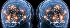 Les Neurones Miroirs : Que se passe-t-il dans mon cerveau pour que je comprenne l'autre ? Appelées aussi neurones de l'empathie, les #neuronesmiroirs seraient à la base de notre culture. Pour savoir plus sur ce système prodigieux qui nous permet d'entrer en contact les uns avec les autres, cliquez ici : http://www.parcoursduloupblanc.com/blog/neurones-miroirs/
