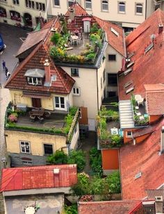 A house in Münster. I 30 Incredible Rooftops You Should Be Lounging On Right Now