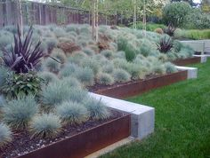 Retaining wall with blue fescue grass