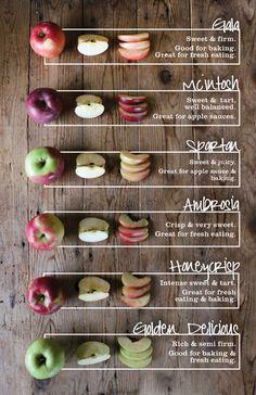 Mcintosh Apples, Golden Delicious Apple, Fresh Eats, Apple Farm, Apple Varieties, Kos, Honeycrisp Apples, Apple Butter, Sweet Tarts