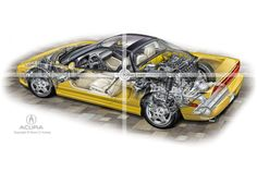 Sportscar illustration