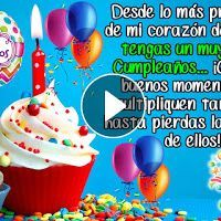 Cat Fashion Show - Funny Videos - Funny Pictures Happy Birthday Wishes Song, Happy Birthday Tom, Happy Birthday Celebration, Happy Birthday Pictures, Birthday Songs, Happy Birthday Messages, Happy Birthday Greetings, Birthday Quotes For Daughter, Videos Funny