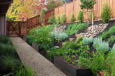 "Hillside gardening - 1/4"" steel metal boxes retain soil"