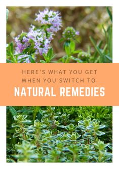 Here's why you should start switching to natural remedies now. #AcupunctureWorks #Acupuncturebenefits #tcm #traditionalchinesemedicine